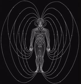 O magnetismo é um dos regentes de cada célula de nosso corpo